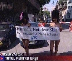 Proteste pentru ursi