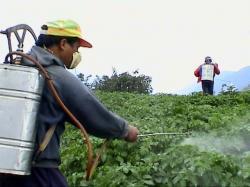 ecologizarea pesticidelor