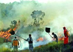 incendii in spania