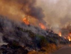 incendiu de padure in cluj