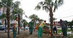 palmieri in bucuresti
