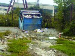 ghene de gunoi