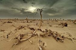 incalzirea climatica