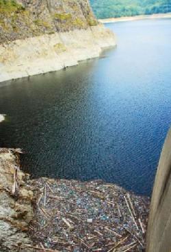 Acţiune de ecologizare în zona lacului Vidraru