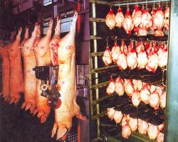 reducerea consumului de carne
