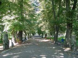 reabilitare parc