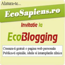 ecoblogging.jpg
