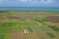 Agricultura ecologica si sanatatea umana