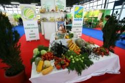 Germania ar prefera să importe produse bio din România, în locul celor din China
