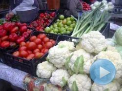 standarde pentru legume si fructe