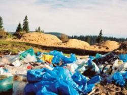 degradarea pungilor de plastic dureaza 400 de ani