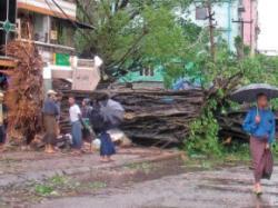 dezastre naturale in 2008