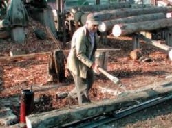 resturi de lemn