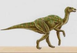 sit paleontologic
