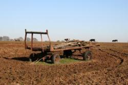 agricultura excesiva