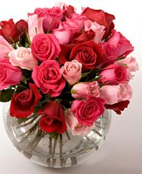 flori organice