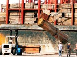 importul lemnului si defrisarea