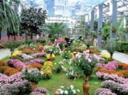 gradina botanica din iasi