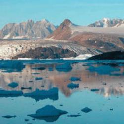 topirea ghetarilor din antarctica