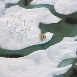 ultimul urs polar