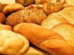paine integrala ecologica