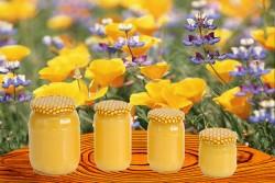 Mierea, medicamentul oferit de natura