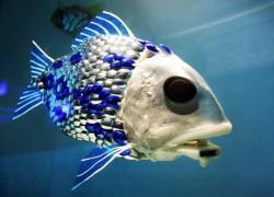 051007_robot_fish.jpg