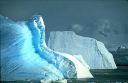 O bacterie necunoscut? a fost descoperit? sub ghea?a din Antarctica
