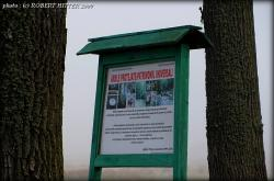 arie-protejata-patrimoniu-universal-padurea-bavna-1.jpg
