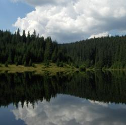 lacul balta