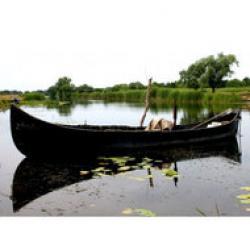 resursa piscicola in delta dunarii