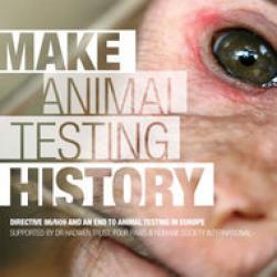 testarea pe animale