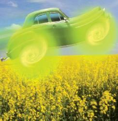 Biocombustiili