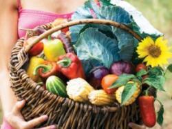 cos cu legume ecologice