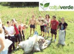 ecologizare la musetesti