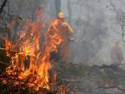 incendiu2.jpg