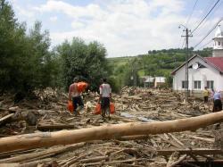 Tirlisua- trei ani de la dezastru