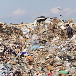gropi gunoi
