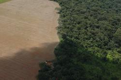 teren agricol din Mato Grosso