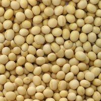 Adevarul despre consumul de soia