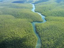Ecuador: Parlamentul da unda verde forajului dupa petrol in jungla amazoniana