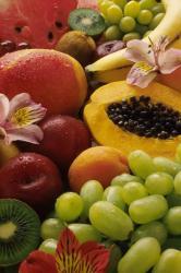 fructe b