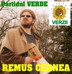 remus-cernea_3.jpg