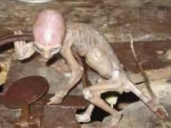 extraterestru