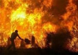 incendiul Mehedinti