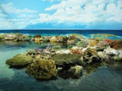 marele recif