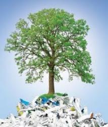 proiect ecologic