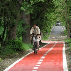 biciclete inchiriate