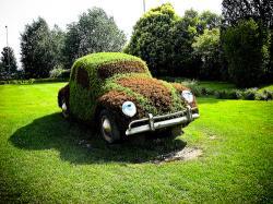 autovehicule ecologice