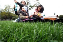parc pentru picnic